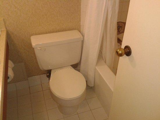 Chelsea Hotel, Toronto: Bathroom size.