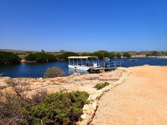 Yardie Creek Boat Tours: Staring point
