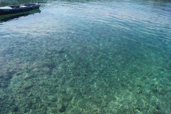 TUI SENSIMAR Kalamota Island Resort: How clear the bay is at Kolocep