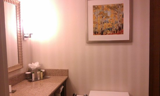 DoubleTree by Hilton Denver - Westminster: Artwork in the bathroom
