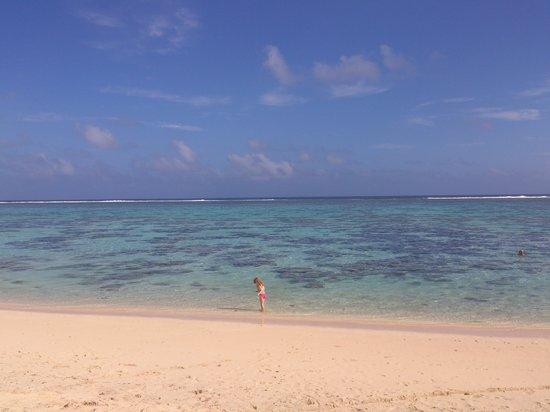 Cooks Bay Villas: View