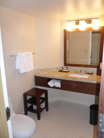 Philadelphia Marriott Downtown : Spacious Bathroom