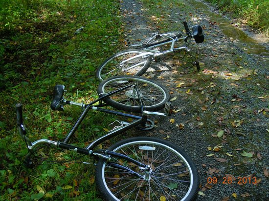 Virginia Creeper Trail: The bikes laid down and said they would not go uphill one more foot today.