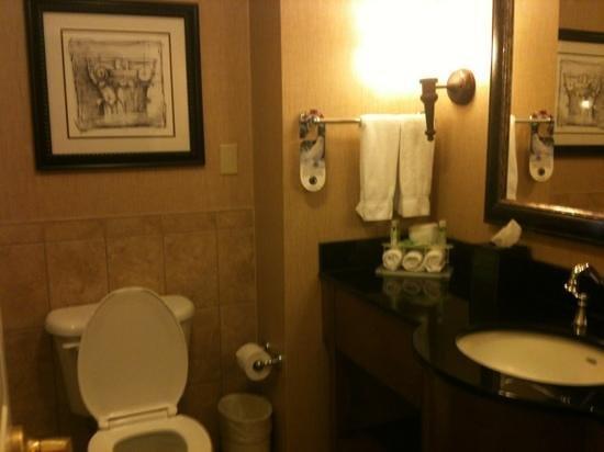 Holiday Inn Express Savannah-Historic District : bathroom