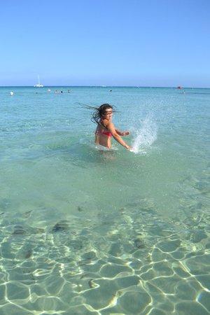 Paschalia Hotel: самое лучшее это море и пляж