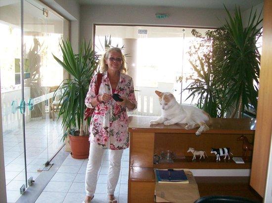 Hotel Stavroula Palace: Ewa with hotel cat