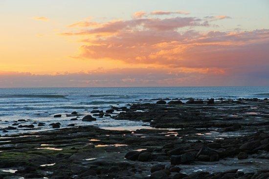 Norfolks on Moffat Beach: Moffat Beach - pools at low tide - dawn
