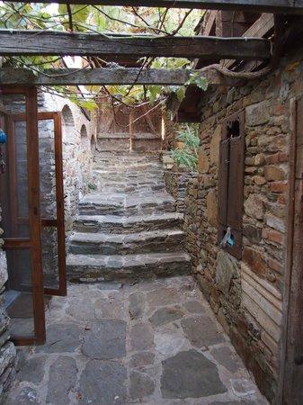 Terras Evler - Terrace Houses Sirince: Front steps, Grapevine House
