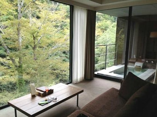 Arcana Izu: view from the room.