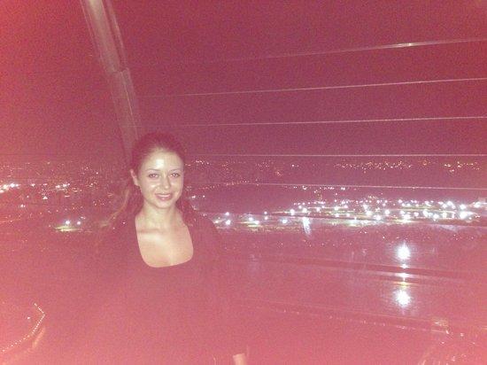 Marina Bay Sands Skypark: view