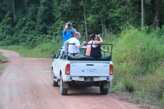 Tabin Wildlife Resort: The Tours