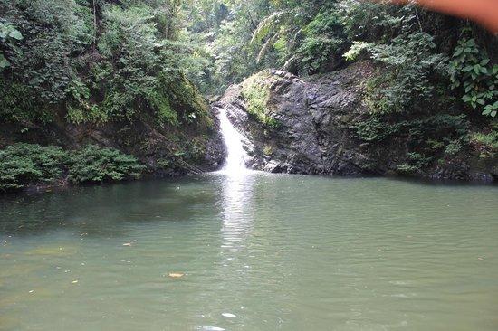 Tabin Wildlife Resort: Waterfall