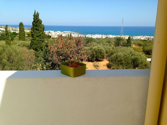 Astra Village Apartments: Vue de l'une des terrasses