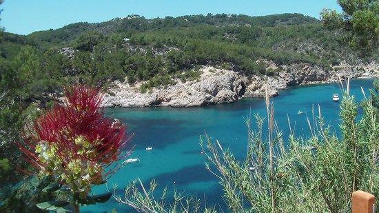 Hotel Ole Galeon Ibiza : la baia