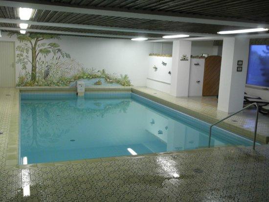 Hotel St. Ulrich: Piscina interior