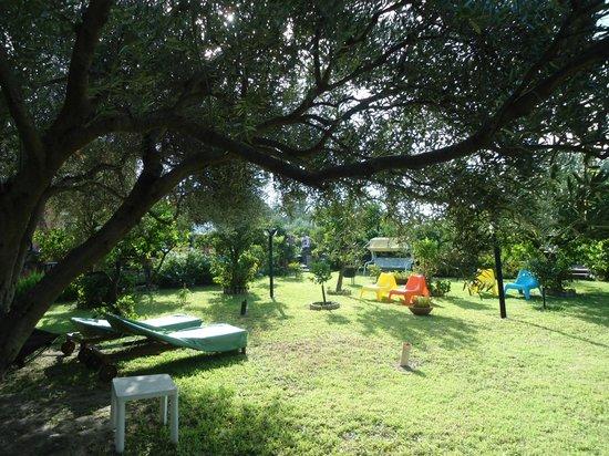 B&B Villa Maria Giovanna : giardinetto
