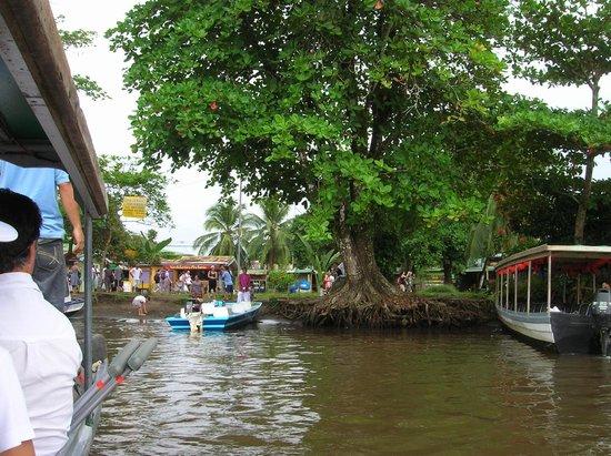 Cabinas Tortuguero: Embarcadero de Tortuguero