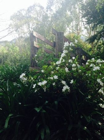 Crystal Creek Meadows Luxury Cottages & Spa Retreat: gardens