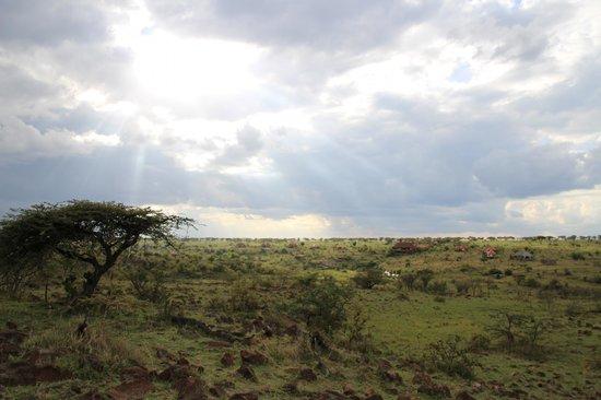 Amani Mara Camp : 外観