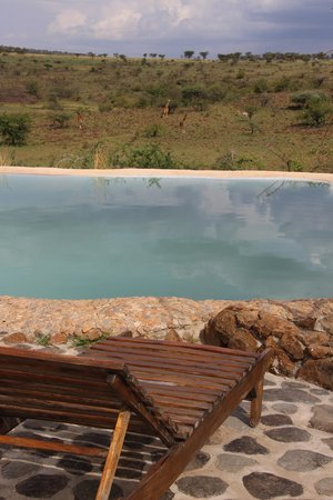 Amani Mara Camp : プール
