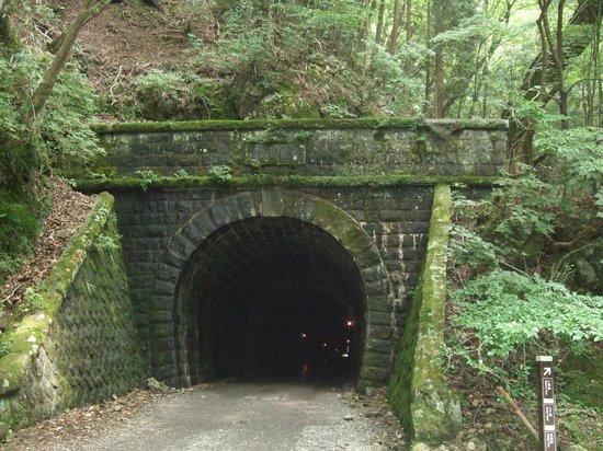Kawazu Nanadaru Waterfalls: 『伊豆の踊子』になった気分の旧天城トンネル