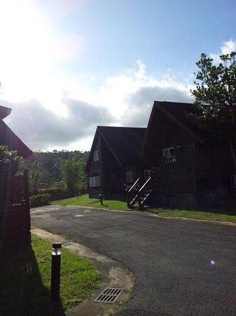 Kentington Resort : morning