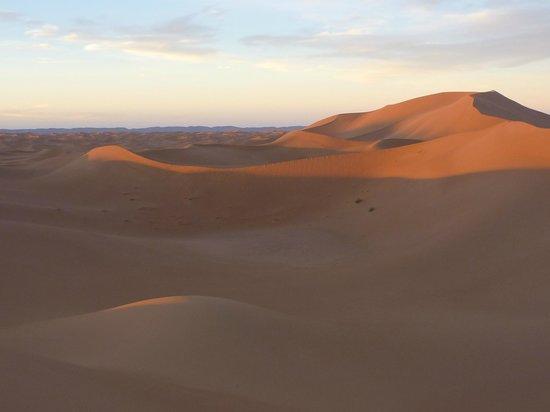 Erg Chigaga : Wüste