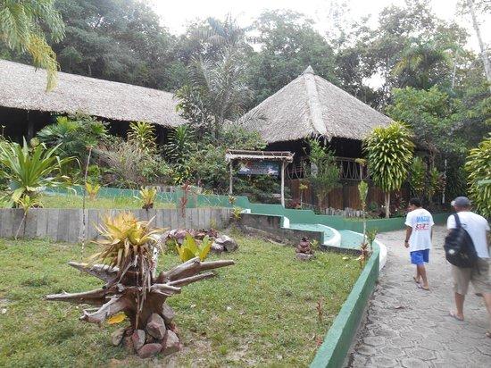Amazon Village Jungle Lodge: Arrival