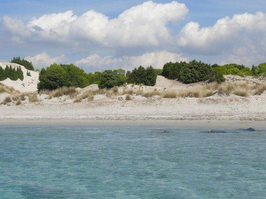 Porto Pino: acqua turchese e dune bianche