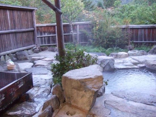 Ryokan Yakenoyu: 貸し切り風呂の右側、木製の寝湯、石風呂の2つの湯殿あり