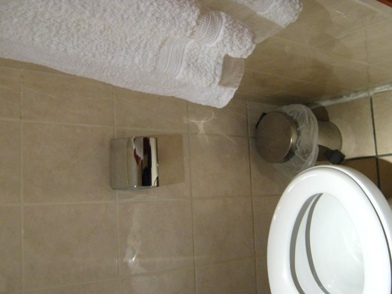 Hotel Residence Bourgogne: Water con poco spazio
