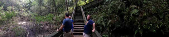 Devil's Millhopper Geological State Park: Some friends taking in the scenery