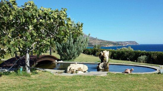 Trapezaki Bay Hotel: Garden