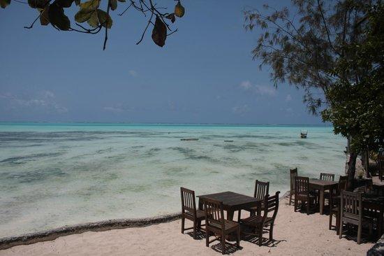 Coral Rock Zanzibar: View entering the Restaurant