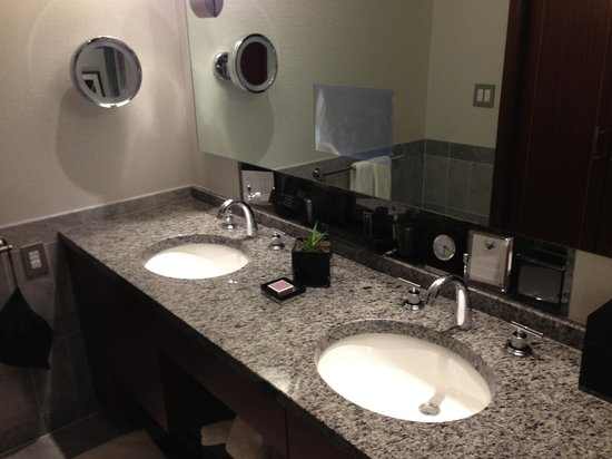 The Ritz-Carlton, Charlotte: Watch TV whilst you shave
