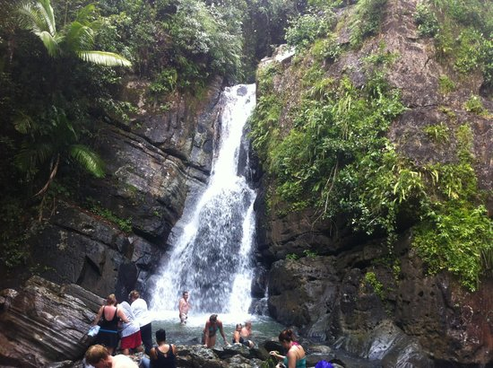 Park Royal Puerto Rico at Club Cala: Mina Falls, El Yunque Rain Forest