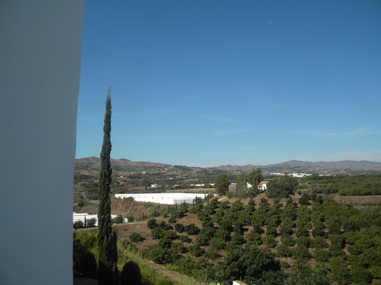 B bou Hotel Cortijo Bravo : the view from my room