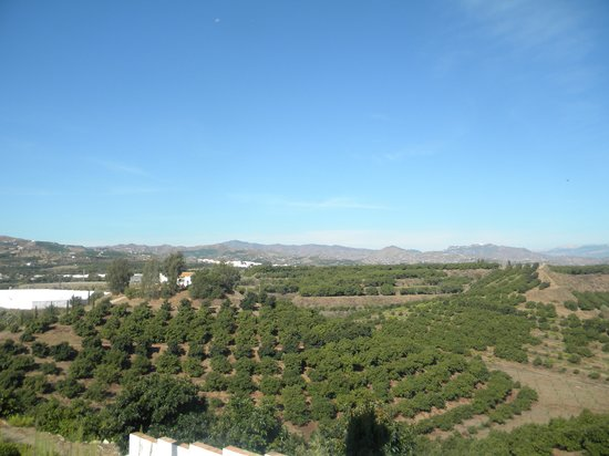 B bou Hotel Cortijo Bravo : from the terrace