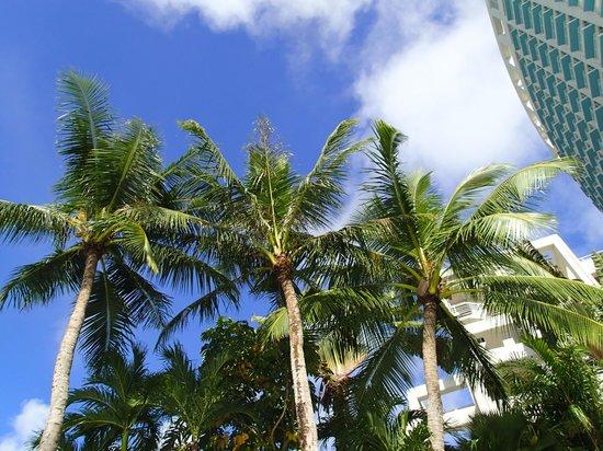 The Westin Resort Guam : 好天に恵まれました