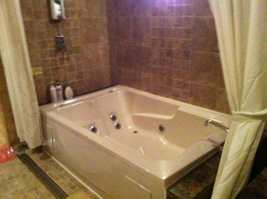 Hotel Elle Inn : Bath tube