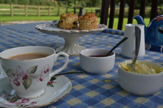 Bickwell Meadow B&B: A welcome cream tea