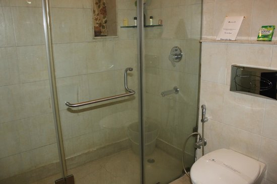 Rockland Inn: Executive suite - shower