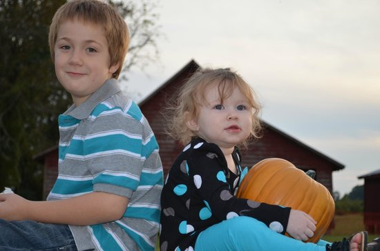 Windsor Castle Park: Favorite Place for Family Fall Photos