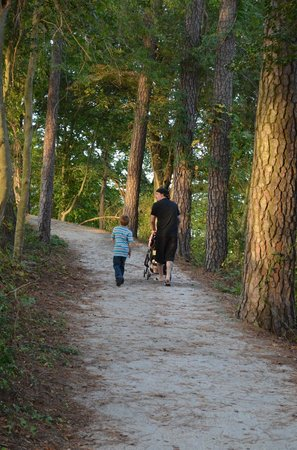 Windsor Castle Park: Family walk on one of the trails