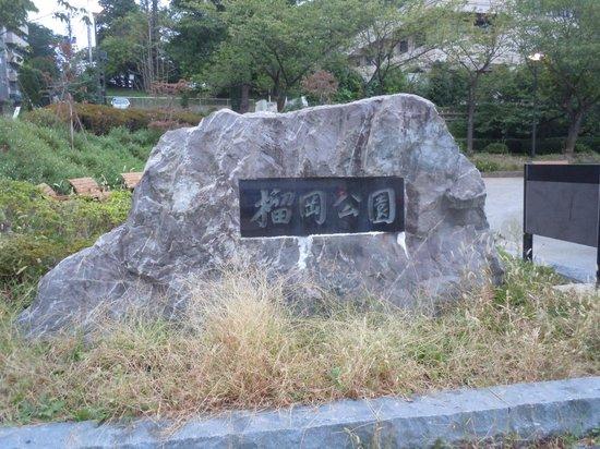 Tsutsujigaoka Park : 榴岡公園