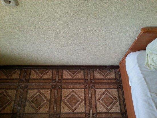 Hostel Cruise - Big Spruce: грязь на полу