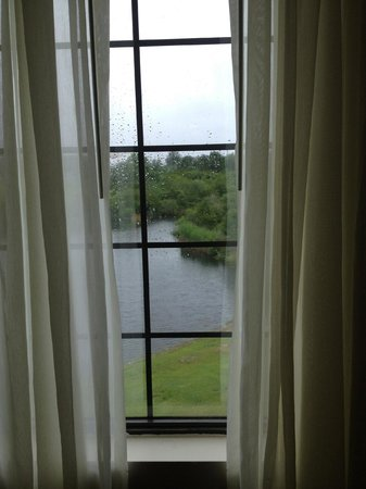 Staybridge Suites: Lovely view of the lake