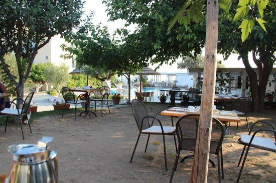 Antigoni Beach Hotel & Suites: Essplatz im Freien unter Olivenbäumchen