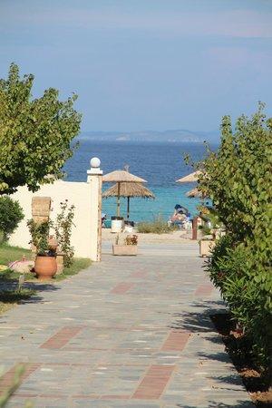 Antigoni Beach Hotel & Suites: Blick von unserm Zimmer bzw. Garten zum Meer