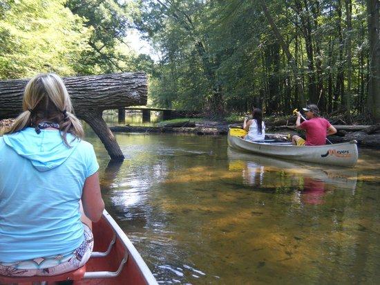 Tecumseh Paddling Company: River Raisin